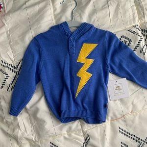 Lightening Bolt Hooded Sweater